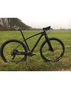 Massini Aigle  custom MTB