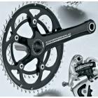 Campagnolo Veloce 10 speed kettingblad-zwart-53